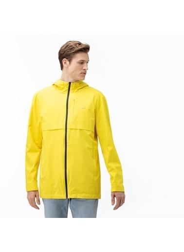 Lacoste Erkek Kapüşon Yağmurluk BH0011.11E Sarı